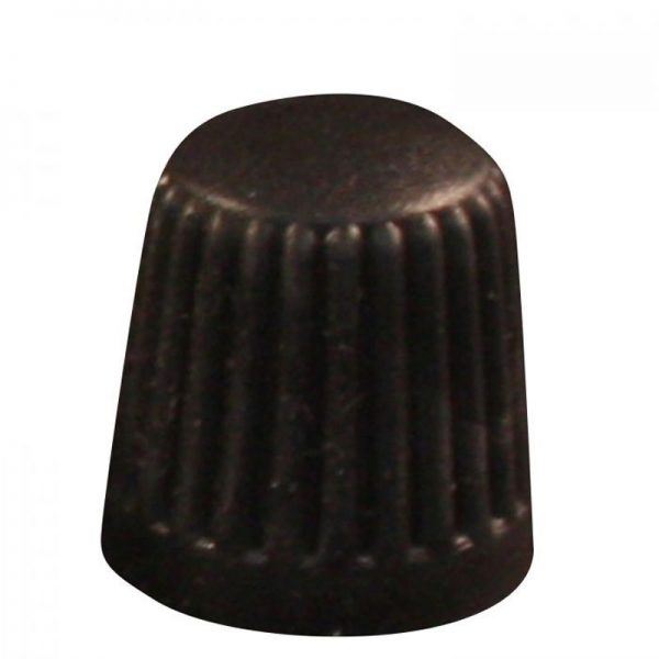 Valve Stem Caps 100 pcs.